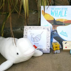 Children's products from the shop