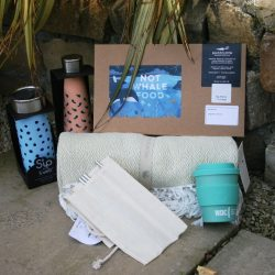 Shop, reuse and recycle for whales and dolphins