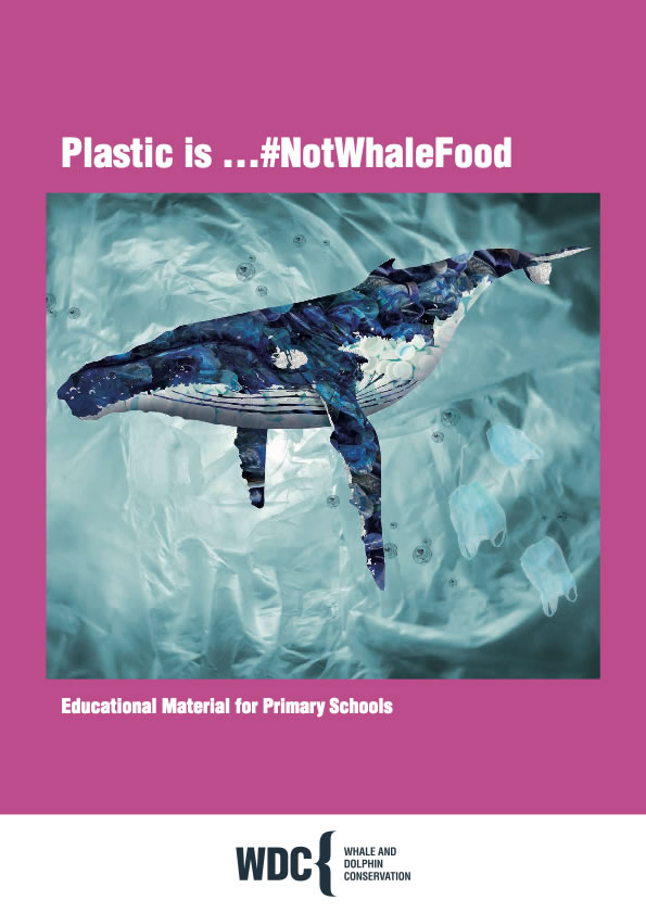 Information about plastic for education (key stage 1)